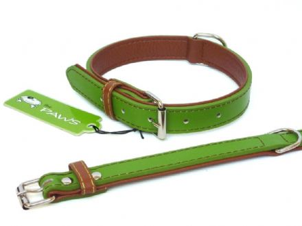 Fusion Lime Collar - Small